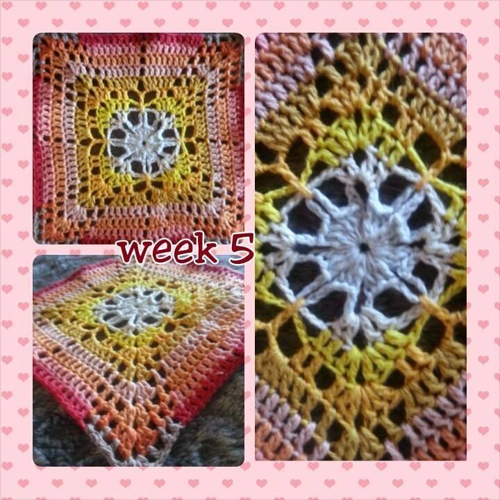 Week 5, gemaakt door Anja de H. Dit is het vierkantje dat Marinke Slump, de ontwerpster, het mooiste vierkantje van week 5 vond.