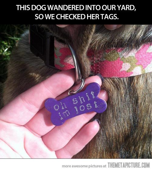 Best dog tag ever.