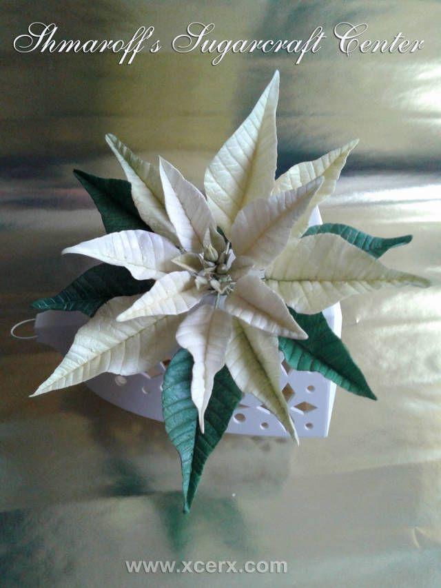 How to make gum-paste poinsettia - CakesDecor