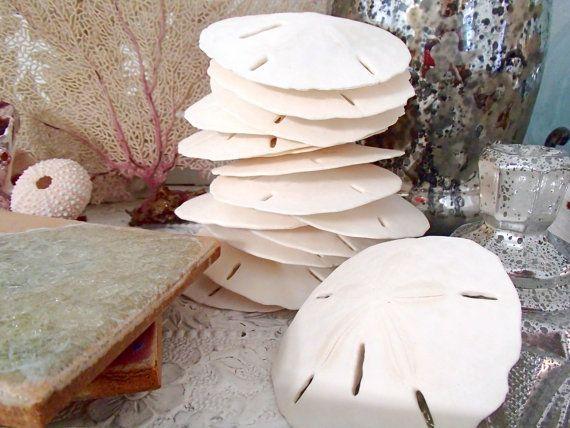"Beach Decor, Shell Decor, Beach Wedding Shells - Large Sand Dollars 3""-3.5"", Set of 12 on Etsy, $22.00"