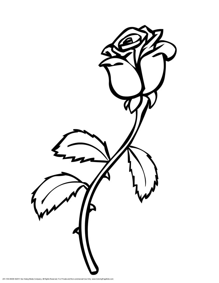 coloring pages rose roses printable flower drawing google sheets