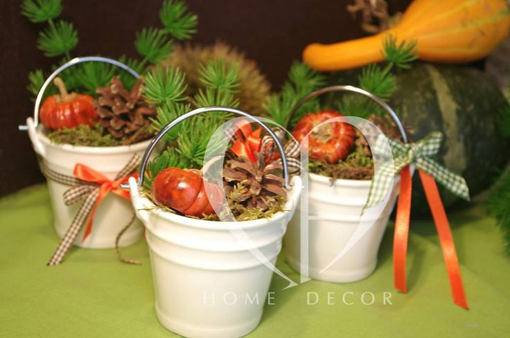 set of three ceramic place cards, moss, pine cones and dried mini pumpkins