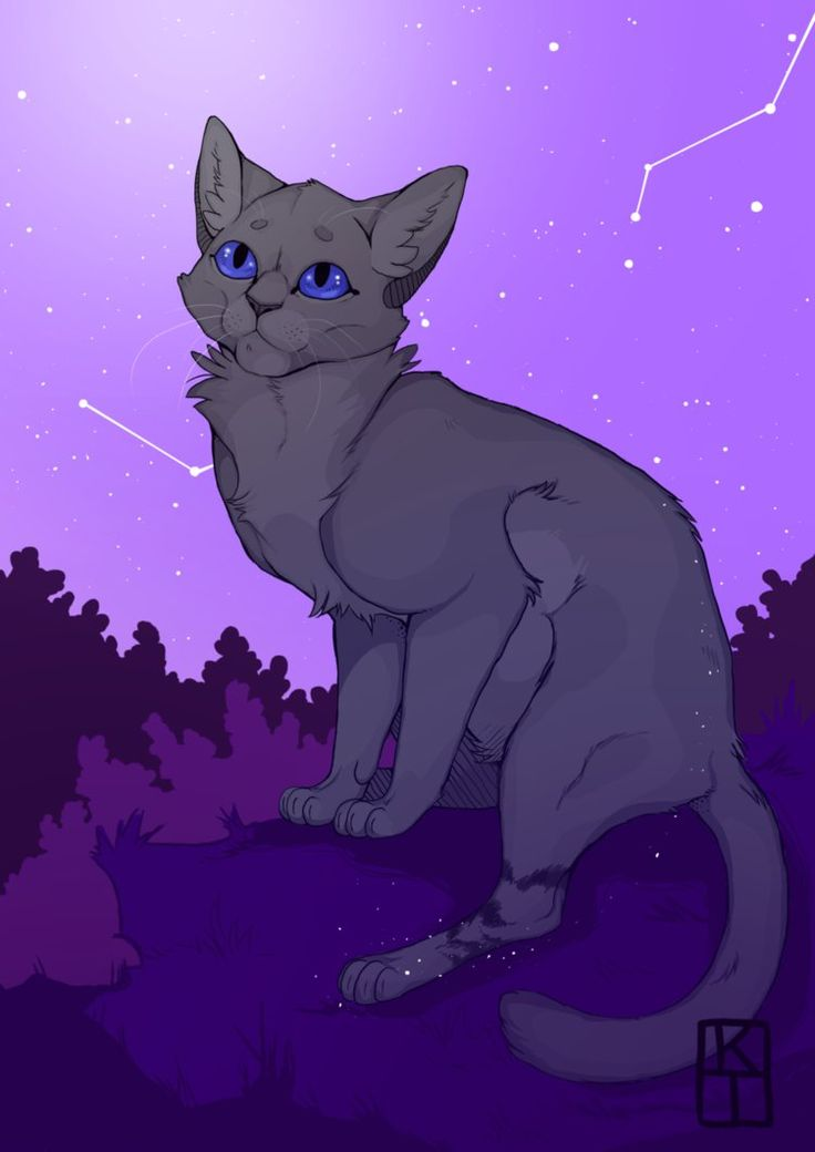 Yass, Warrior Cats fanart And yes I have an obsession over constellations, I literally draw them everywhere. At first I didn't really like Cinderpelt but I grew to like her, especially in The New P...