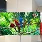 LG Display to Showcase Ultra HD TVs, Full HD Smartphone Screens at CES