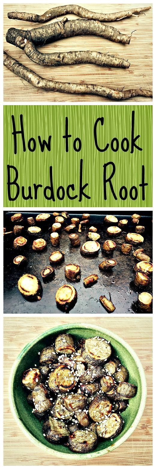 Burdock root is great for the garden and has amazing medicinal benefits. Plus it's a super tasty edible if you know how to cook it right!: