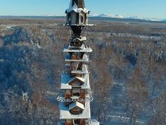 "Observe the spindly ""Dr. Seuss House"" from a distance, as it lies on rural private property near the town of Talkeetna."
