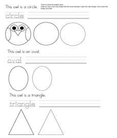 owl activities, owl crafts, owl shapes, silly shaped owls, silly shaped penguins, owl lessons, owl bulletin boards, shape bulletin boards, D...