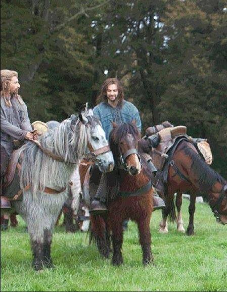 Casual day on the ponies. Fili and Kili. Hobbit times