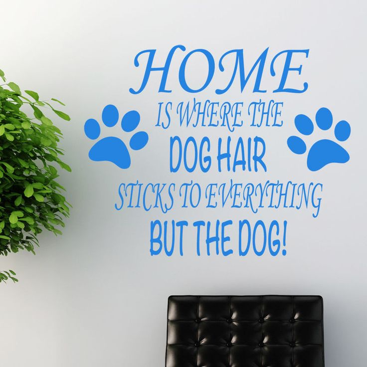 Best Pet Wall Sticker Art Decals Dog Grooming Vinyl Decals - How to make vinyl wall decals with cricut
