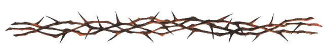 ... on Pinterest | Crown Of Thorns Bracelet Tattoos and Thorn Tattoo