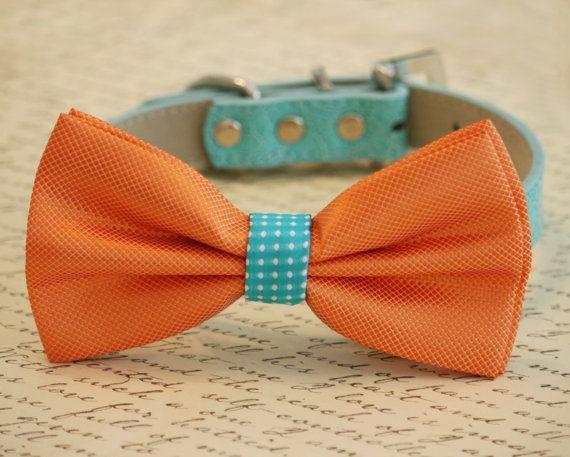 Orange and Turquoise wedding accessory, Orange Dog Bow Tie, Pet Wedding accessory, Wedding idea, Beach Wedding on Etsy, $32.50