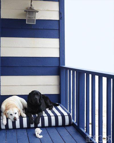 English Labradors, Daisy, left, and Nacho, on the deck of a Malibu home.