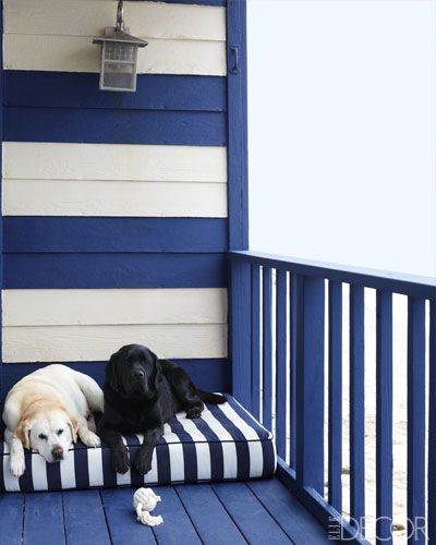 English Labradors, Daisy, left, and Nacho, on the deck of a Malibu home.
