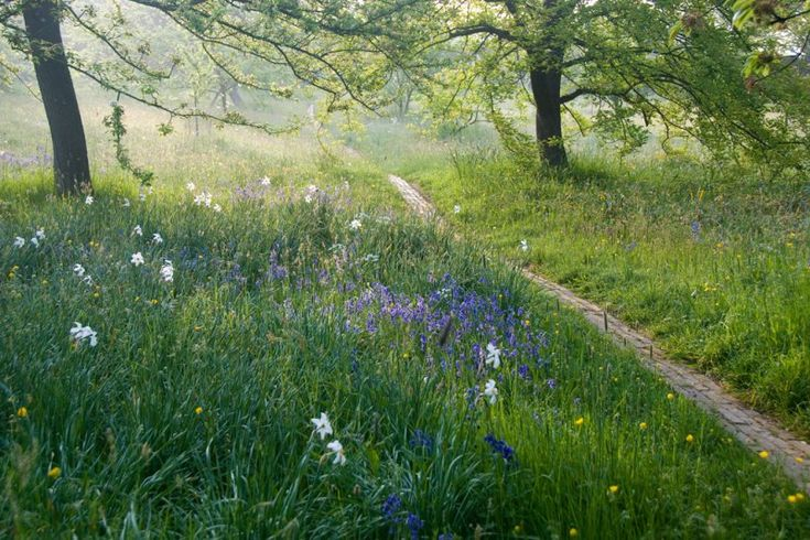 orchard path | Great Dixter, East Sussex, UK
