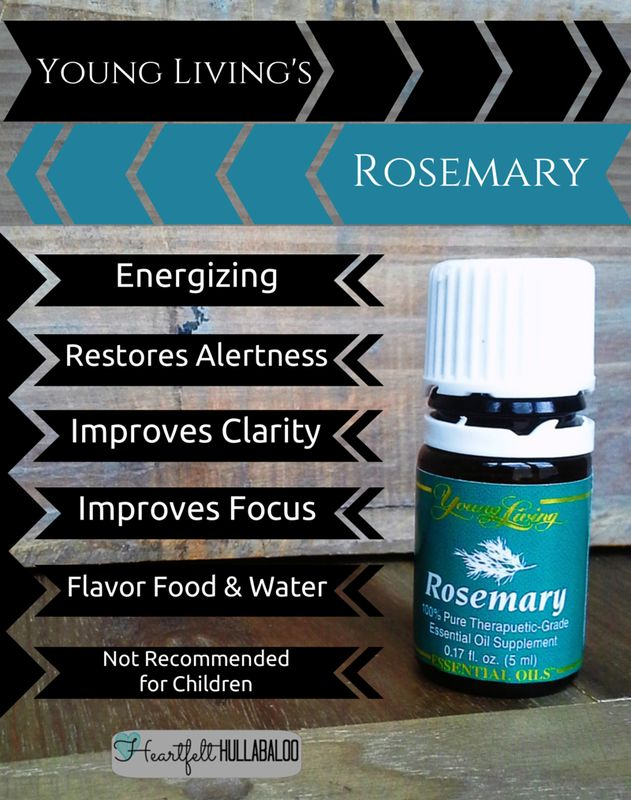 Young Living's Rosemary. Energizing, restores alertness, improves clarity, improves focus, flavor food & water, not recommended for children. #essentialoils #undertwentydollars #heartfelthullabaloo