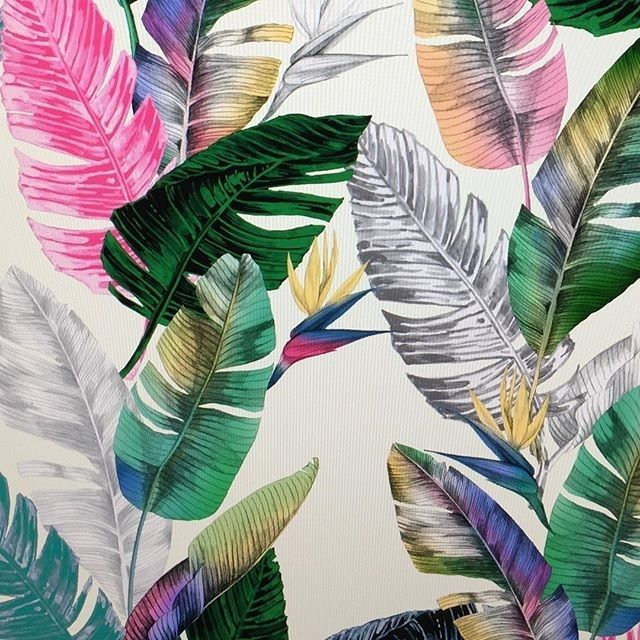 regram @buliebeltzer It's almost in the 60's so therefore I'm wearing three layers. Working on tropical prints for spring and summer 2017.  #textiledesign #surfacedesign #tropical #spring2017 #printdesigner #diditwork #print #art #surfacespatterns #leaf #design #color #summer #wallpaper #textileprintdesign