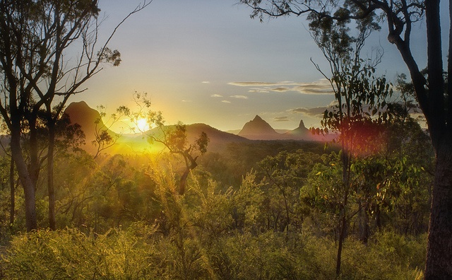 This is taken halfway up Wildhorse Mountain on the Sunshine Coast, looking over the beautiful Glasshouse Mountains