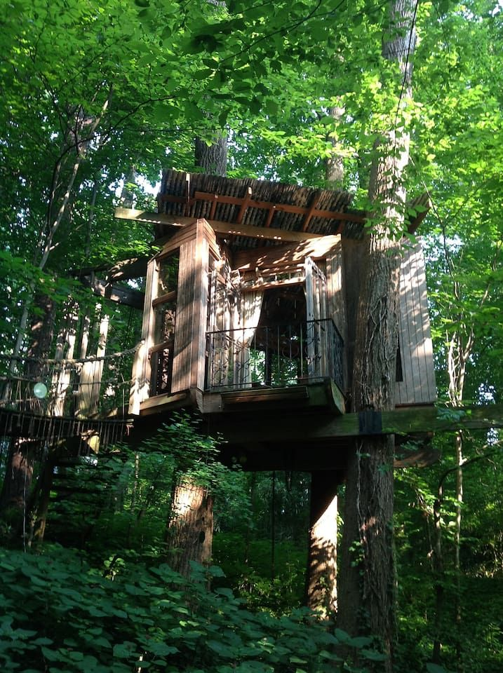 Secluded Intown Treehouse Treehouses For Rent In Atlanta