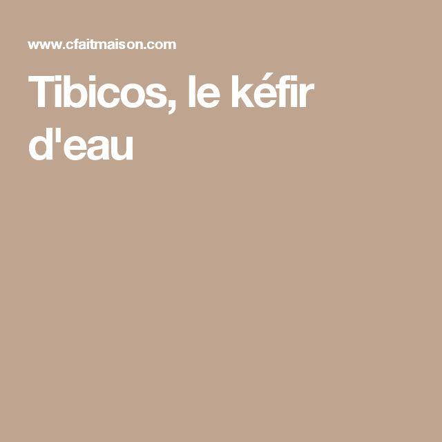Tibicos, le kéfir d'eau