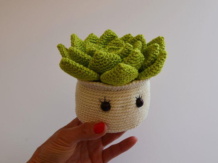 Pikiti la succulente-crochet-amigurumi-la chouette bricole (5)