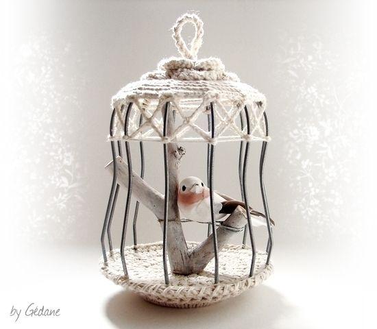 21 best bird cage cage oiseau images on pinterest - Petite cage oiseau deco ...