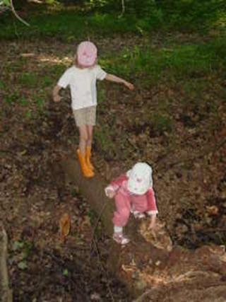 Pädagogische Konzeption des Waldkindergartens