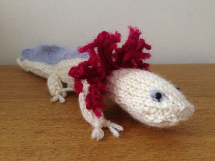 Knitted axolotl - knitted by talented knitter Adam, and submitted to the Best in Show Website! Knitting pattern from Best in Show: Knit Your Own Pet. We would love to see your knits from our Best in Show books - submit them on bestinshowbooks.com