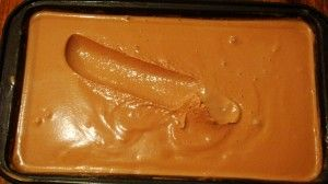 Thermomix Chocolate Ice Cream