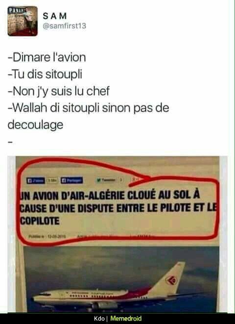 Jpp de c algériens la vie ils font trop rire