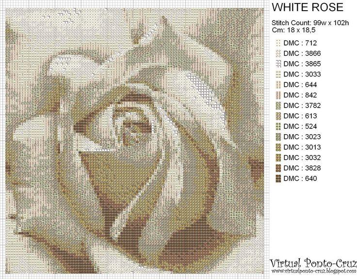 [Rosa+Branca.jpg]