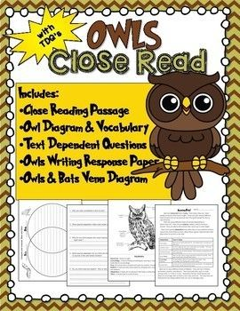 A non-fiction close read that teaches all about owls.  This product Includes the following resources: Owls Close Read with vocabulary and owl diagram Text Dependent Questions Owls and Bats Venn Diagram All About Owls Writing Paper