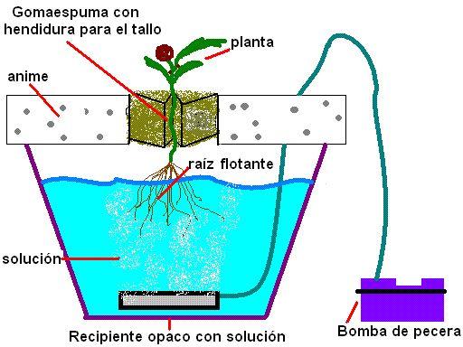 Manual Cultivo Hidropónico http://www.lamarihuana.com/manual-cultivo-hidroponico/