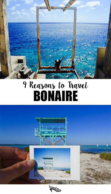 9 Reasons to Pack Your Bags for Bonaire | Travelettes
