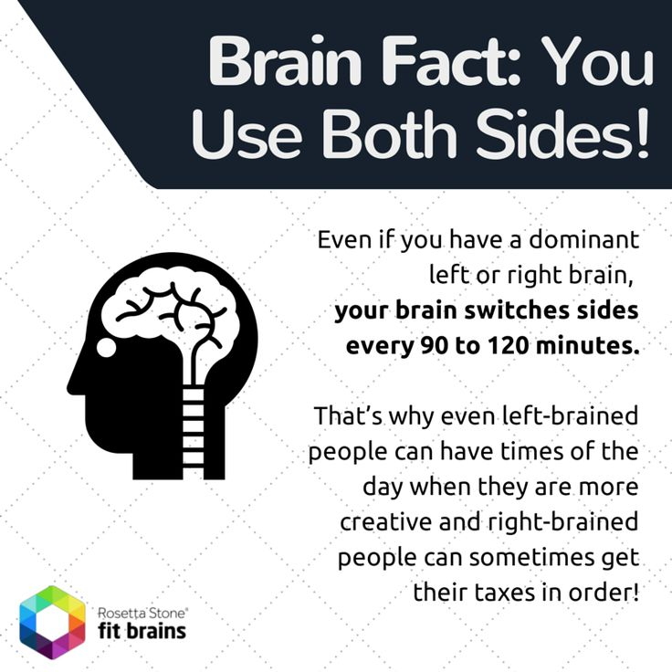 #Fact of the Day: Even if you have a dominant left or right #brain, your brain switches sides every 90 to 120 minutes! More #fun for your brain: http://taps.io/fitbrains
