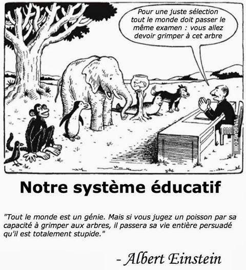 Notre système éducatif selon Albert Einstein