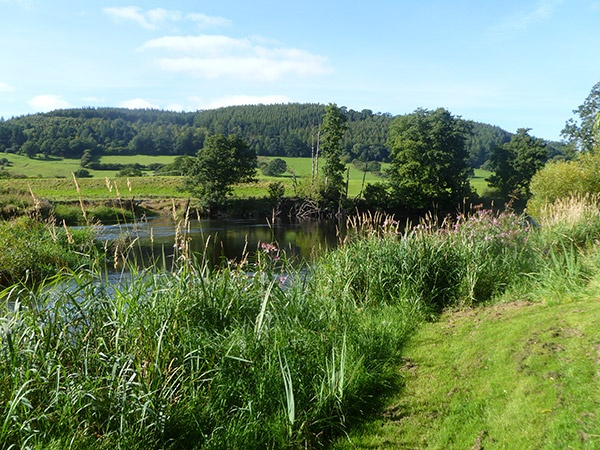 Sunny Day on the River Dee at Rivercatcher Luxury Holiday Cottages - www.rivercatcher.co.uk
