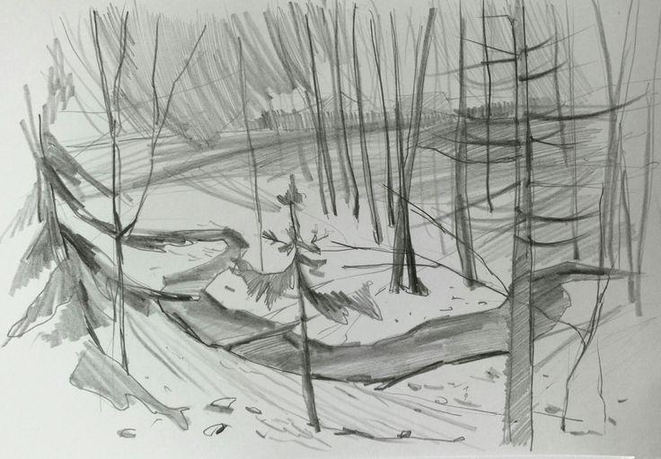 "Sveta Petleva. ""Зимний лес"" или ""ёлки палки"". Бумага,  карандаш."