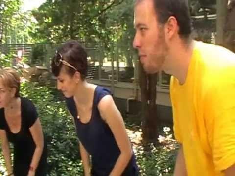 Trópusi esőerdő - YouTube