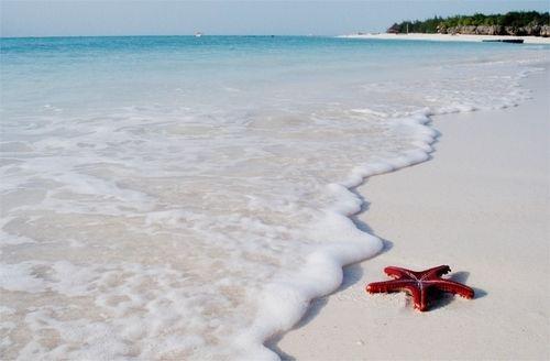 White Sand Beaches...Zanzibar, Tanzania!