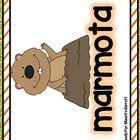 -Tarjetas de Vocabulario a Color  -2 Artículos: La Marmota y El día de la Marmota  -Preguntas de Comprensión  -Hoja de Escritura expositiva con est...