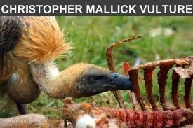 Oxymoron Entertainment or Epassporte Christopher Mallick as The Vulture.