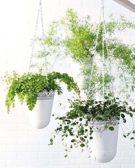 15 pines de macetas de flores colgantes que no te puedes - Plantas ikea naturales ...