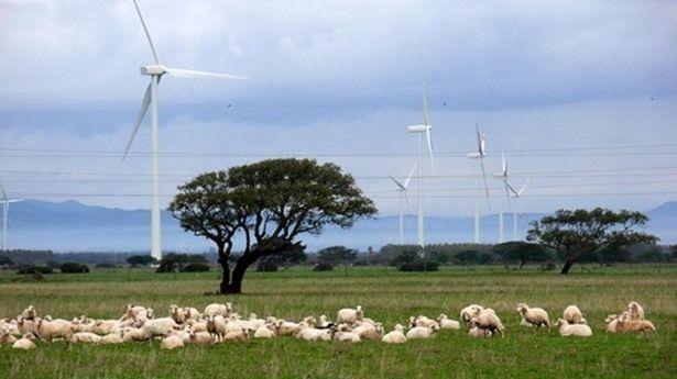"""Sardegna: Tanti ettari di terreno anche in disuso possono con l'installazione di un impianto eolico, (grazie anche alla forza incentivante che riguarda il settore), essere nuovamente produttivi.     Fino a pochi giorni fa era necessario richiedere la """"Via"""", una procedura autorizzativa di valutazione di impatto ambientale, che allungava i mesi di attesa per l' approvazione del progetto eolico con costi che talvolta superavanole spese del progetto stesso."""