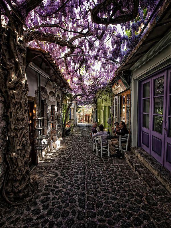 レスヴォス島/ギリシャ                                                                                                                                                                                 もっと見る