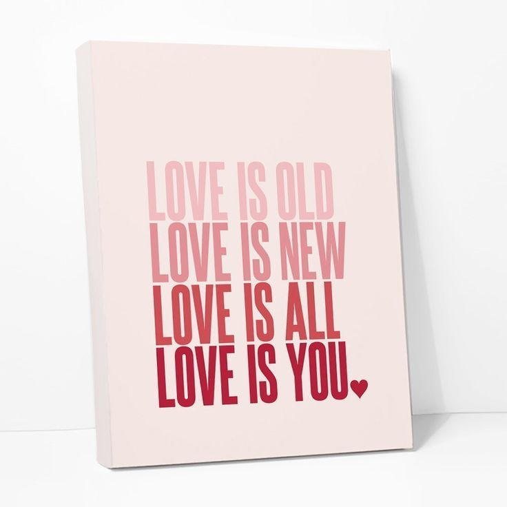 Love Is Old New All You