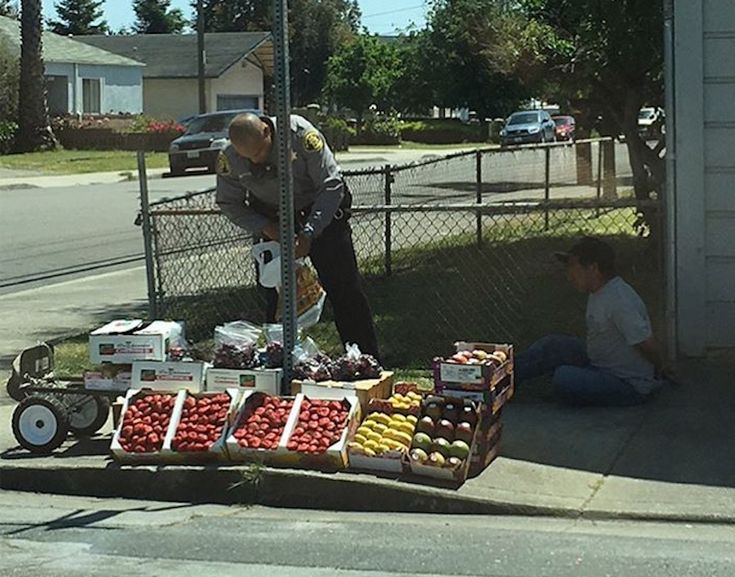 Should the cops bust the guy peddling strawberries and mangos on the street corner? A recently-taken photo of an Alameda County Sheriff's deputy arresting a...