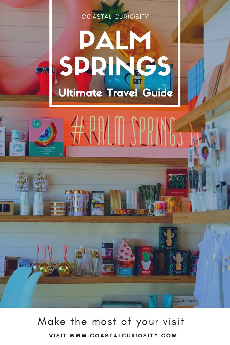 Must do and see things for a trip to Palm Springs, California - Coastal Curiosity