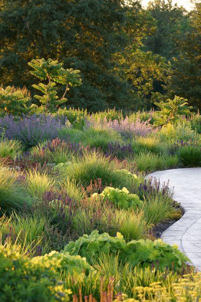 Adam Woodruff: Creating a Native Planting Design Style - Article