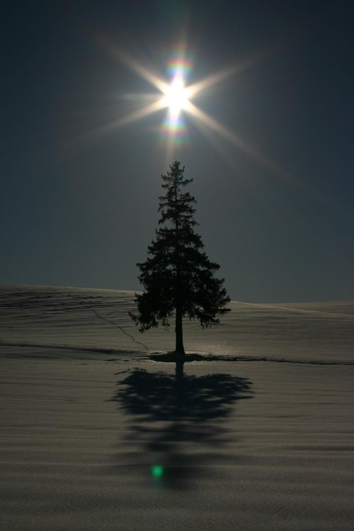 .... very serene image