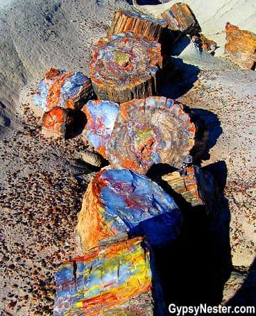 Petrified Forest National Park in Arizona is definitely a drive-through park.  All those million years ago this area was an upright tropical forest. Fallen trees accumulated in river beds and were buried by volcanic ash.  Wondering what else there is to do in the area around The Petrified Forest?  Geology Wonders